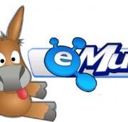 emule-290x172