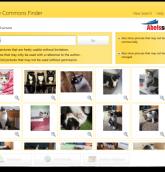ccfinder immagini copyright
