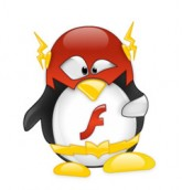flash player linux