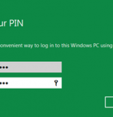 password windows 8