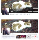 timeline facebook nuova